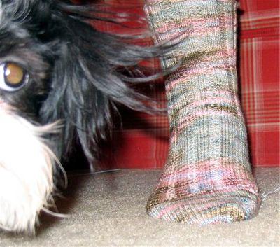 KPPPM sock and Baby Girl